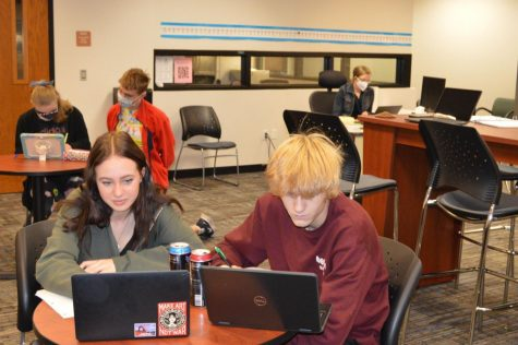 Students use computers in the PAL lab to complete assignments.